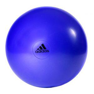 Adidas Swiss Bal Flash Purple_65 cm kopen